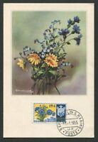 SAN MARINO MK 1955 FLORA KORNBLUME MAXIMUMKARTE CARTE MAXIMUM CARD MC CM d8010