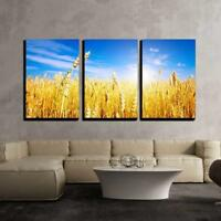"Wall26 - Golden Wheat Field with Blue Sky in Background - CVS - 16""x24""x3 Panels"