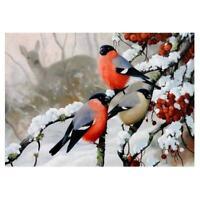 "Full Drill 5D DIY Diamond Painting""Winter birds""Diamond Embroidery Cross St F1J4"