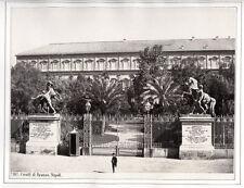 c.1860's PHOTO - ITALY CAVALLI DI BRONZO NAPOLI SOMMER