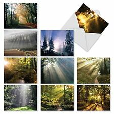 M1735BN Shining Through: 10 Assorted Blank All-Occasion Note Cards /Envelopes.