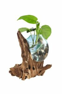 Drop Deco Glas Teak Natur