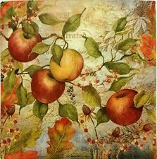 APPLES BRANCHES FALL  2 individual LUNCH SIZE paper napkins for decoupage 3-ply