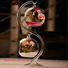 Pro 8cm Hanging Glass Flowers Plant Vase Stand Holder Terrarium Container FY