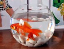 Clear Round  Aquarium Fish Tank Transparent Glass Vase Decorative Mind Relaxing