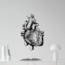 Human Heart Wall Decal Organ Medicine Anotomy Vinyl Sticker Home Decor 115hor