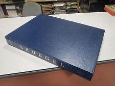 PIETER BRUEGEL MICHAEL GIBSON NOUVELLES EDITIONS FRANCAISES COFFRET 1980 *