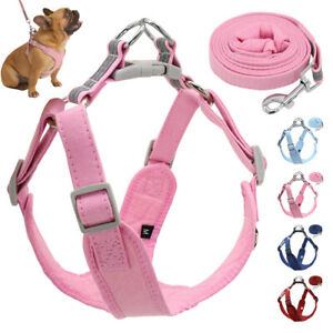 Reflective Dog Step-in Harness and Leash Soft Walking Vest for Small Large Dogs