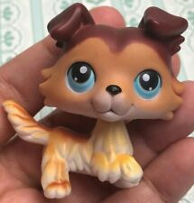 RARE Authentic Littlest Pet Shop LPS Sage Collie paw up Red Magnet 58 Dog