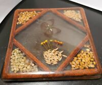 Vintage 1970s Lucite Acrylic Trivet Footed Butterfly Seeds Kernels 8 inch  Boho