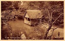 POSTCARD   SURREY   ALBURY   The  Silent  Pool