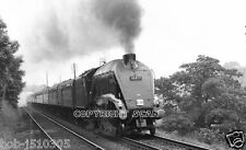 Railway Steam Photo.  : 60019 'BITTERN' ON THE RCTS 'A4 TO GLASGOW' 67 (9)