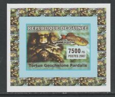 Guinea 5740 - 2007 TURTLES & FISH #2 imperf deluxe sheet unmounted mint