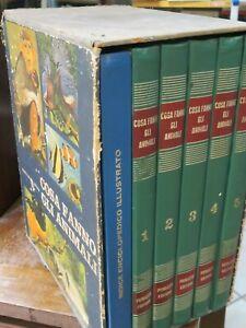 Enciclopedia COSA FANNO GLI ANIMALI 6 volumi in cofanetto PERUZZO della fauna di