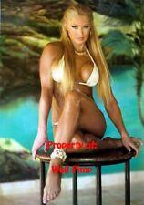 SABLE WWE WCW WWF DIVAS Poster Print 24x36 WALL Photo 1