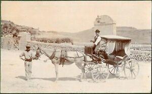 Maltese Karozzin, Superb Real Photographic Card by R. Ellis, Malta Photographer.