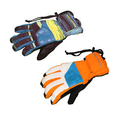 DC Shoes Seger Insulated Gloves Waterproof Snow Ski Mens Warm Winter New Snowboa