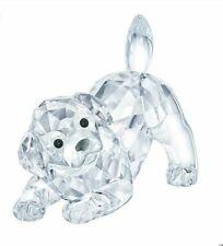Swarovski Crystal Labrador Puppy, Playing Mib #5408608