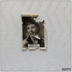 B.B.C. Star Petula Clark Small Old Photograph (BWP9)
