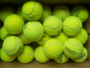 12 Used Tennis Balls, Wilson, Head, Dunlop, etc Great Dog Toys