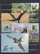 Christmas Island 2010 - Maxicard - Vogels/Birds/Vögel  WWF