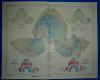 Vintage 1958 Atlas Map ~ WORLD OCEANOGRAPHY ~ Old Authentic ~ Free S&H