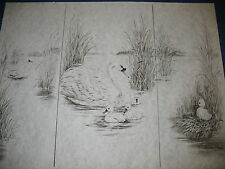 * Tri Chem 2504 Swans With Baby Make One A Ugly Duck Picture to paint Trichem