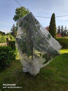 10m breit Insektenschutznetz,65g/m² Kulturschutznetz,0,8 mm, Kohlfliege.