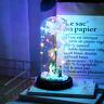 Rose Éternelle Fleurs Séchées Décoration Maison à LED Cadeaux Mariage Fête Amour