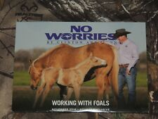 Clinton Anderson Working with Foals 2016 DVD