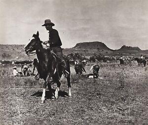 1908/52 Vintage WESTERN COWBOY COW Horse Brander 11x14 Photo Art ERWIN E. SMITH