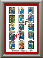 EVERTON - 1970-71 - REPRO STICKERS A3 POSTER PRINT