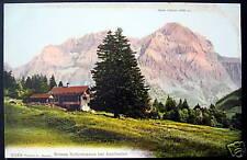 Switzerland~1900's ADELBODEN~Grosse Schirmtanne ~Lohner
