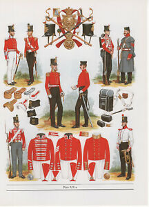 Vintage British Uniform Print 1853 - 54 33rd Regiment Of Foot