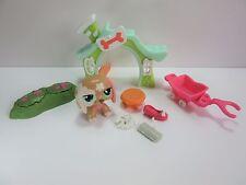 Set Littlest Pet Shop # 2163 walkables brown dachshund dog green eyes LPS #2163