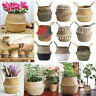 Foldable Seagrass Flower Belly Basket Woven Storage Holder Plant Pots Home Decor