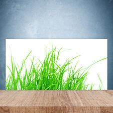 Crédence de cuisine en verre Panneau Paroi 100x50 Floral Herbe