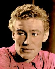 "PETER O'TOOLE IRISH ACTOR HOLLYWOOD MOVIE STAR 8X10"" HAND COLOR TINTED PHOTO"