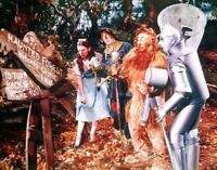 Wizard Of OZ  Cast Haunted Forest Color 8x10 Glossy Photo