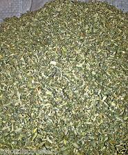 DAMIANA herb leaf TEA organic 1 lb pound WILD CRAFTED cut smoke tunera diffusa