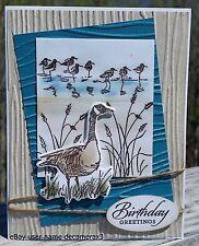 HANDMADE BIRTHDAY CARD, STAMPIN UP! WETLANDS, DUCK,