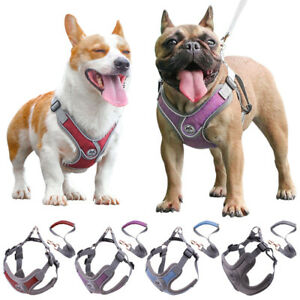 Pet Cat Dog Mesh Harness&Leash Set Walking Outdoor Safety Reflective Puppy Vest