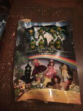 2007 McDonald's Madame Alexander The Wizard Of Oz & TMNT Happy Meal Display