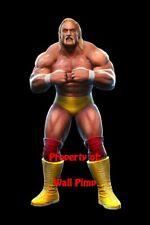 HULK HOGAN WWE WCW WWF DIVAS Poster Print 24x36 WALL Photo 2AAA