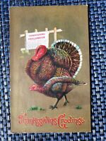 ca1910 Embossed Thanksgiving Greetings Postcard Turkeys Proclamation