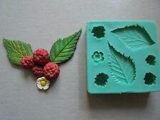 Silicone Mould RASPBERRY Sugarcraft Cake Decorating Fondant / fimo mold