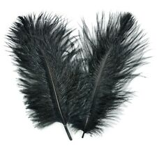 "3 BLACK Ostrich FEATHERS 10-18"" Full Wing PLUMES; Bridal/Wedding/Centerpiece/Hat"