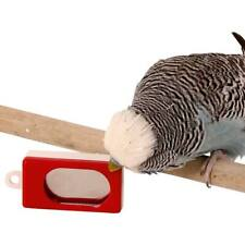 Training Clicker for Parrots and pet birds and animals training device