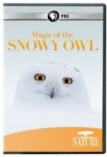 Nature: Magic of the Snowy Owl [New DVD]