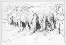 COUNTRY FARM WORK HORSES in STABLE BARN, 1876 Edwin LANDSEER Art Print Engraving
